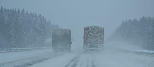 На трассе Кудымкар — Гайны установят рамки для большегрузов