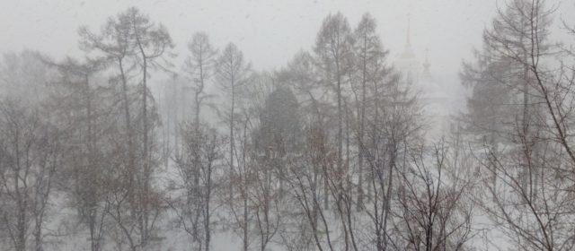 Синоптики: начало марта в Прикамье будет очень снежное