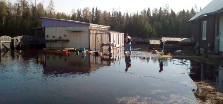 Жители Усть-Черной, чьи дома и постройки пострадали во время паводка, надеются на компенсацию