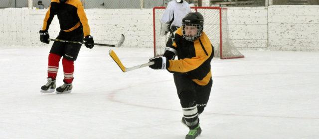 Представлена программа развития хоккея в Пермском крае. Через 5 лет хоккеем будут заниматься 12 тысяч человек