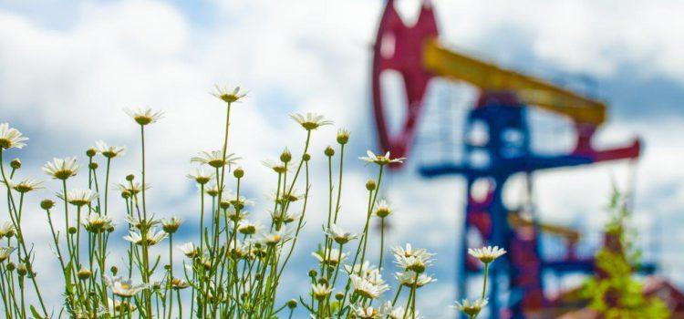 Как в Коми округе нашли нефть