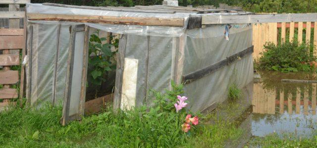 61 придомовую территорию и один дом подтопила Иньва в Кудымкаре