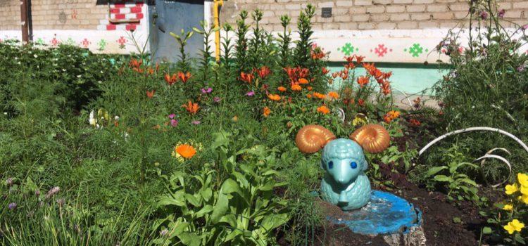 Дом в цветах. Как кудымкарцы украшают дома ко Дню города