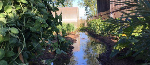 Огороды в воде. Иньва в Кудымкаре выходит из берегов