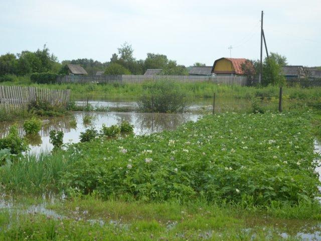 паводок в июле
