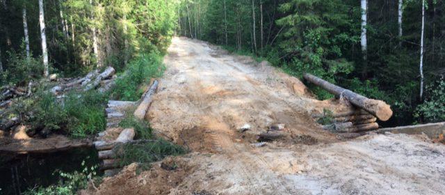 В аварии в Гайнском районе погиб мотоциклист